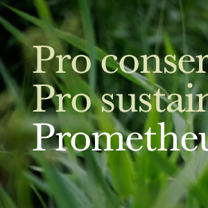Prometheus Finance campaign